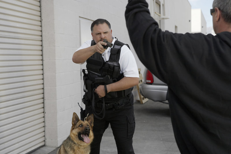 Picture of an Armed security guard with his gun pointed at a suspect with a police attach dog at his side on a leash.